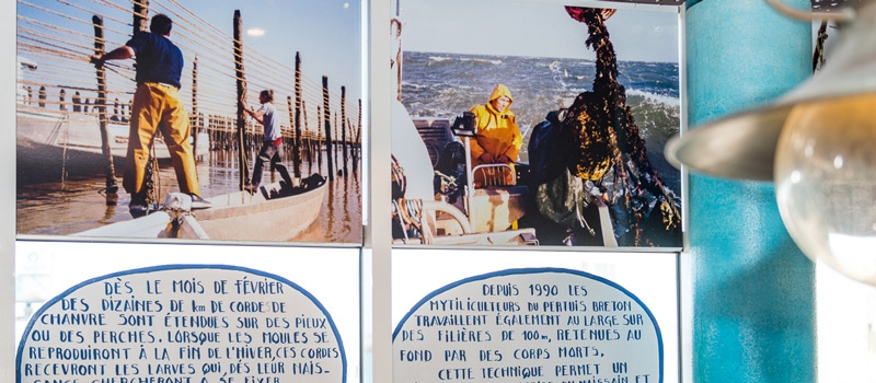 Exposition metiers de la mer apprenez en mangeant